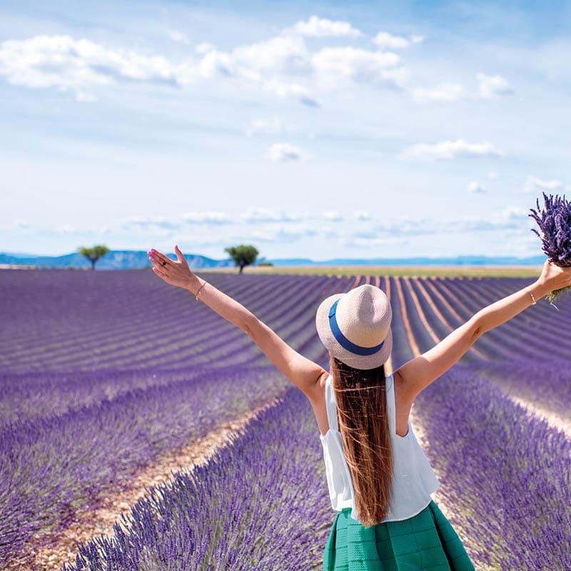 Séjour en Provence Alpes du Sud